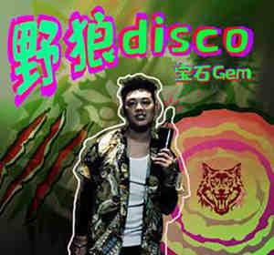 野狼Disco DJ舞曲 野狼Disco DJ串烧